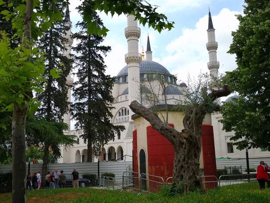 Die neue unfertige Moschee