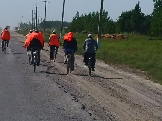 Die Feldarbeitertruppe mit Fahrrädern, eher selten