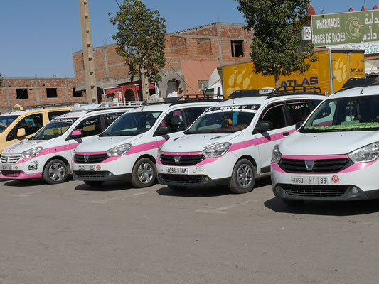 Taxen mit einem Hauch Rose in Kalaat M`Gouda