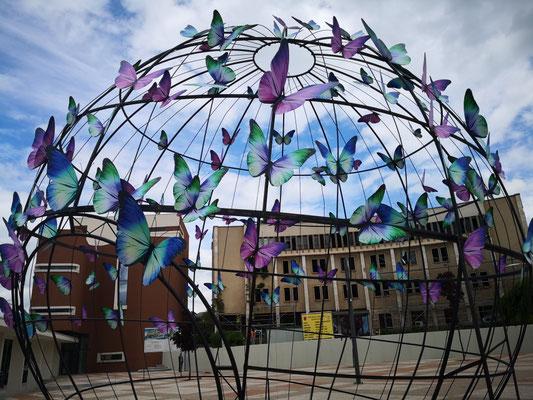 Schmetterlingsinstallation vor der Kathedrale