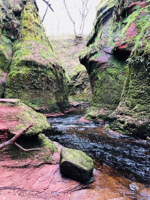 Finnich Glen (links im Bild The Devil's Pulpit)
