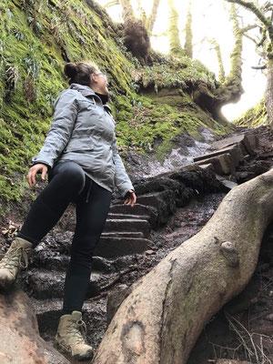 die magische Treppe zum Glen