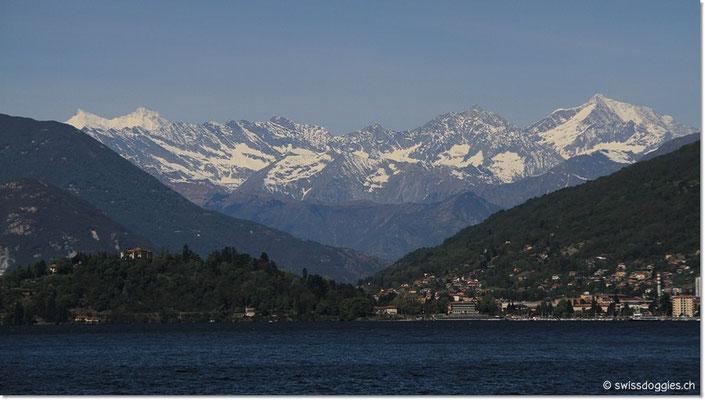 Hinter Intra und Verbana die imposanten Walliser Schneeberge.
