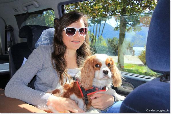 Charly und Jucy geniessen den Ausflug - ausnahmsweise mal auf dem Schoss, da es hier praktisch keinen Verkehr hat und wir gemütlich dem See hinauf nach Cannero fahren.