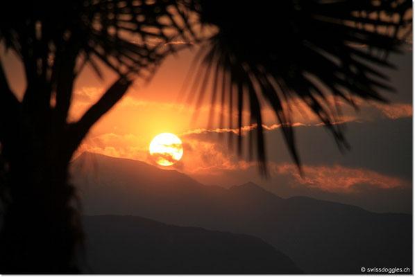Sonnenuntergang... diese zu Fotografieren macht süchtig :) Jeden Tag das selbe und doch jedes Mal anders aber immer wieder WUNDERSCHÖN!