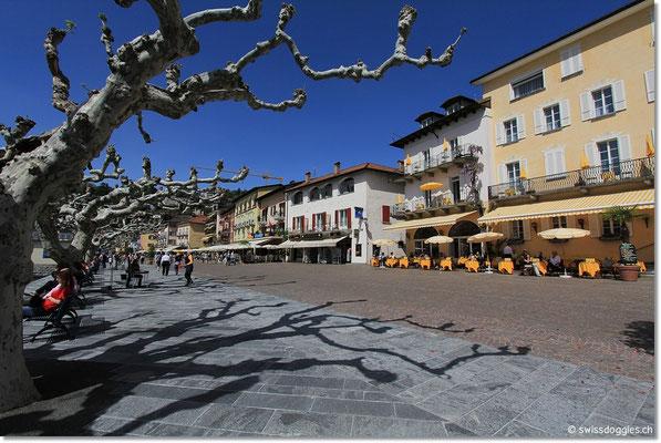 Nach dem Mittag kommen wir in Ascona an und geniessen