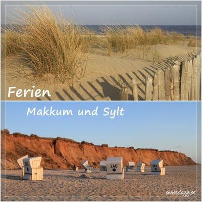 Frühlingsferien 2010: Holland und Sylt - wunderschön, seht selber