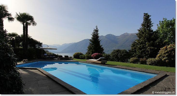 Der Pool ist bezeizt und bei diesen Temperaturen schon eine willkommene Abkühlung.