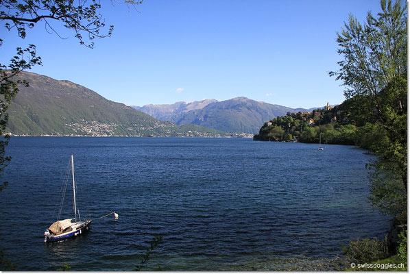 Dafür wird das Ufer des Lago Maggiore nach unseren Ferien mit ein paar neuen Google Earth Fotos bestückt sein :)