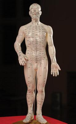 Akupunkturpunkte und Meridiankarte