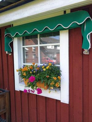 Modell Älmhult von Berg Schwedenhaus Fensteransicht aussen