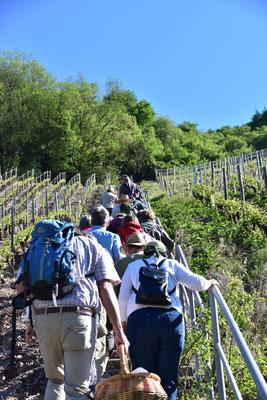 Lange und steile Aufstiege konnten trotz Wärme die Teilnehmer nicht schrecken.