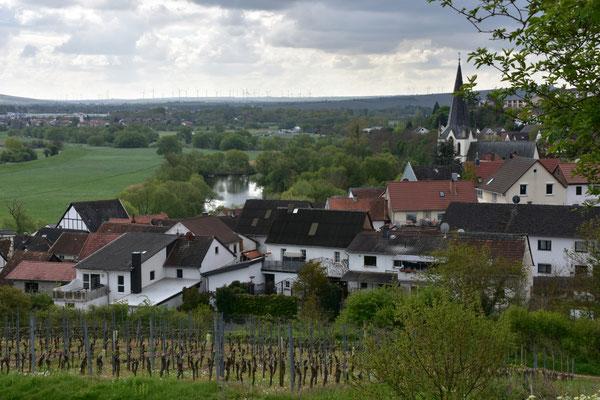 Blick auf Laubenheim Ri. Süden
