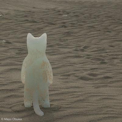 海をみつめるネコ H42xW617xD9(cm)2012年