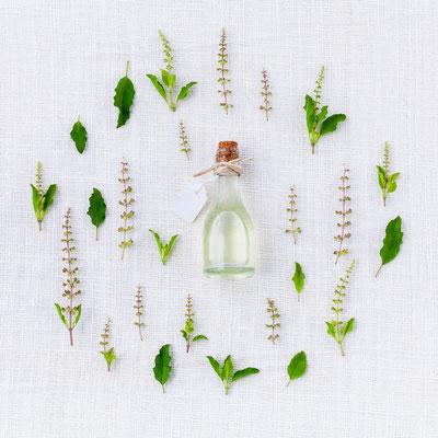 Pflanzenheilkunde, Phytotherapie, Tinktur