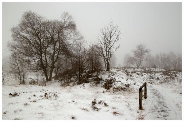 Hohes Venn im Winter