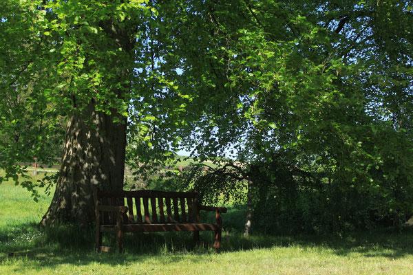 Ein gemütlicher Platz im Garten.