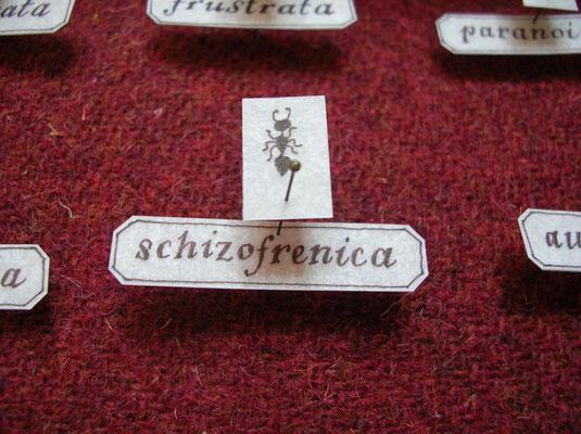Le formiche di Sigmund - dettaglio