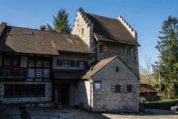 Altenburg (Brugg)