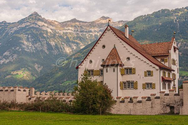 Schloss A Pro in Seedorf