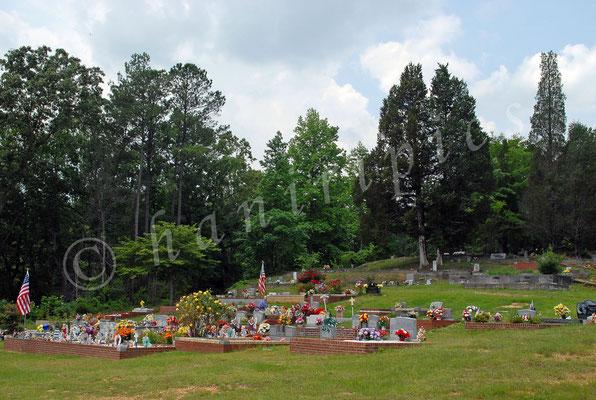 Friedhof auf dem Lande