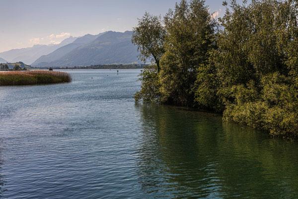 Rapperswil Ausfluss Obersee