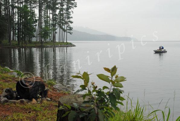 Am Gunterville Lake