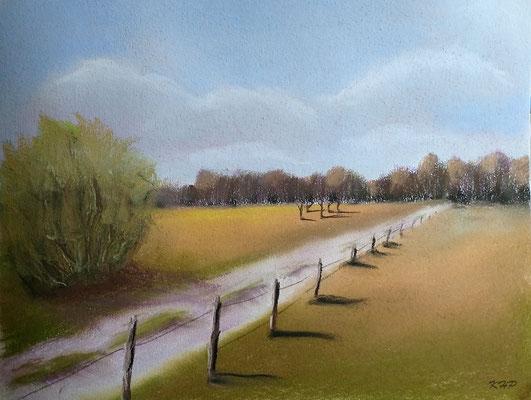 Feldweg , Pastell-Malerei 40 x 30 cm