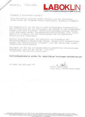 JME Untersuchung - Shangani Madahiro - Rhodesian Ridgeback - Sahwira - Seite 2