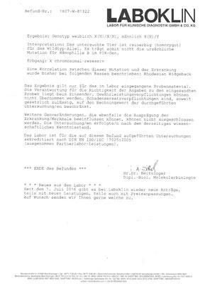 JME Untersuchung - Rhodesian Ridgeback - Mufaro - Zwinger Sahwira - Berlin - Seite 2