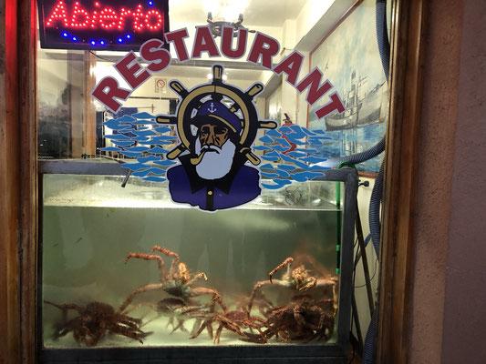 Das Restaurant El Viejo Marino ist unser absoluter Restaurant-Tipp