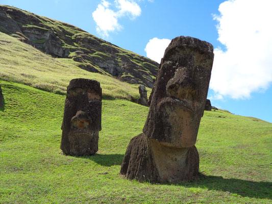 Kreuz und quer: Die Moais auf dem Vulkan Rano Raraku
