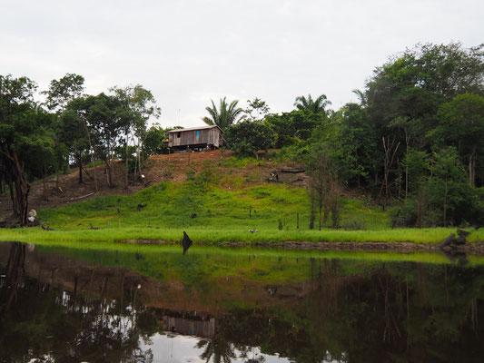 Da der Fluss über das Jahr immer wieder ansteigt und wieder sinkt, müssen die Hütten auf kleinen Hügeln stehen