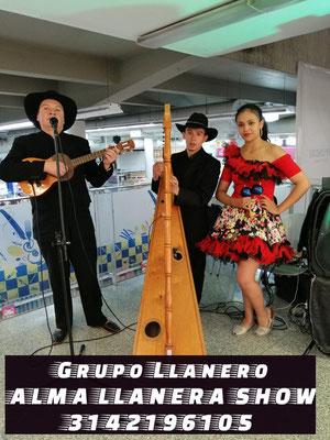 Grupos Llanero show típico Bogota