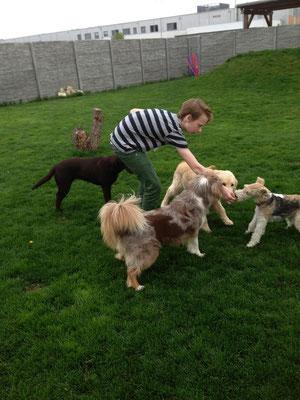 """Nucki, Sunny, Luna und Nora mit meiner """"Aushilfe"""" :))"""