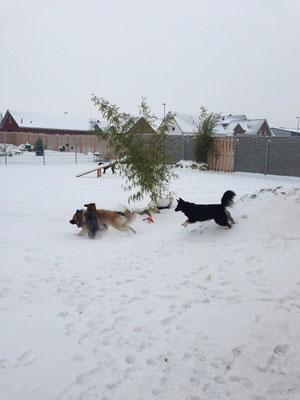 Spielzeit..., Schnee und Kälte stören kein Stück!!