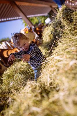 LandSelection Der kleine Bauernhof aus Franken