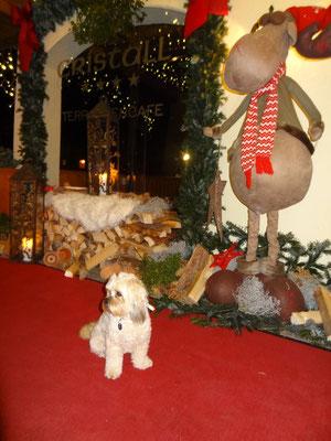 ... Weihnachten 2012 ... 2J11 Mo