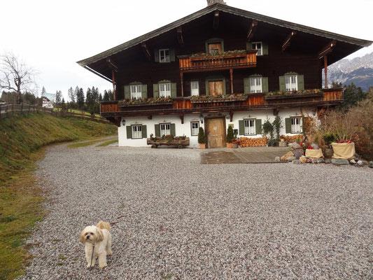... weihnachten 2015 in Tirol ...