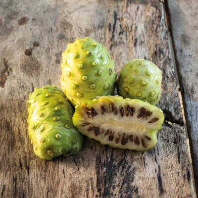 Noni, indische Maulbeere - steigert das Wohlbefinden, ein echtes Wunder der Natur !