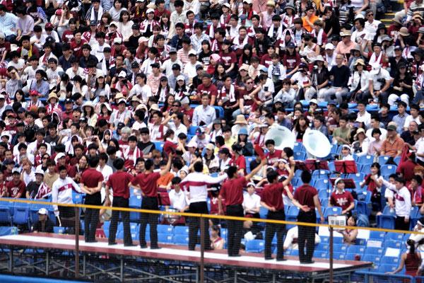 白熱した試合に、外野席の応援も盛り上がる