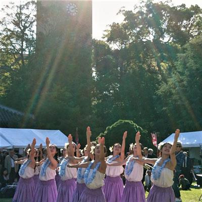 夏のような日差しの下でハワイアンダンスを踊る「Waseda Hula Girls」