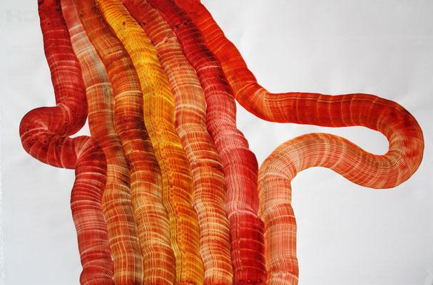 Rote Form, Tusche auf Papier, 68 x 98 cm