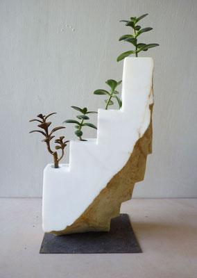 Giardino andino - 2013 - Marmo bianco, ferro e pianta grassa