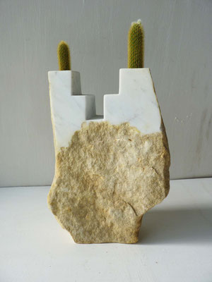 Giardino andino - 2014 - Marmo bianco e cactus