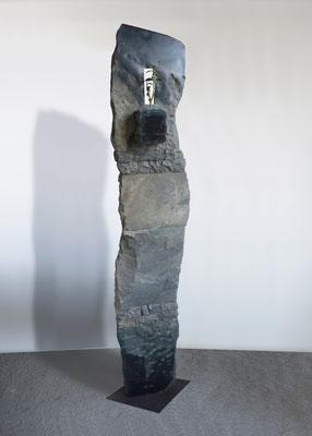 Giardino pensile - 2010 - Marmo  nero e pianta grassa