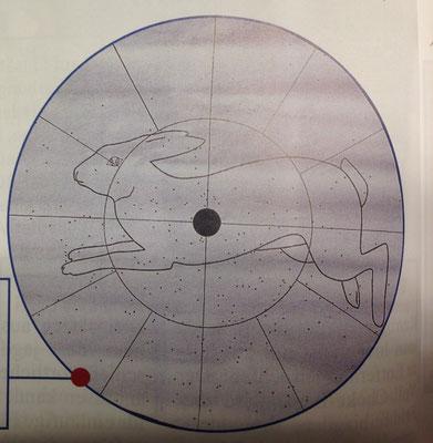 Schrot-Schuss mit Vollchoke