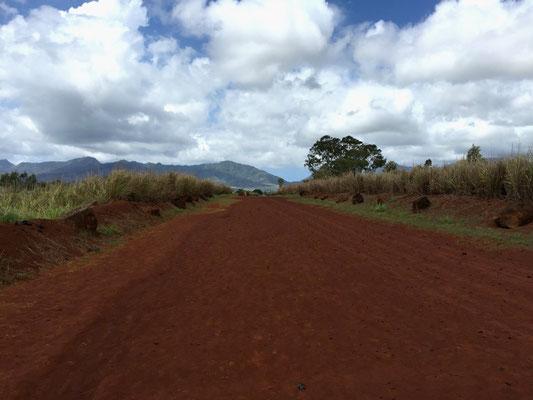ハワイオアフ島クカニロコバースストーン聖地へ続く赤土の道
