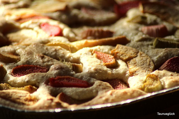 Schneller Kuchen mit Restäpfeln und Rhabarber