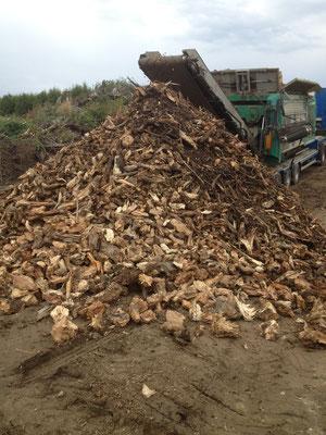 Energieholz